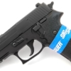 sig sauer p220 carry guide rod